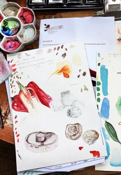 Botanical Watercolour Illustration Class