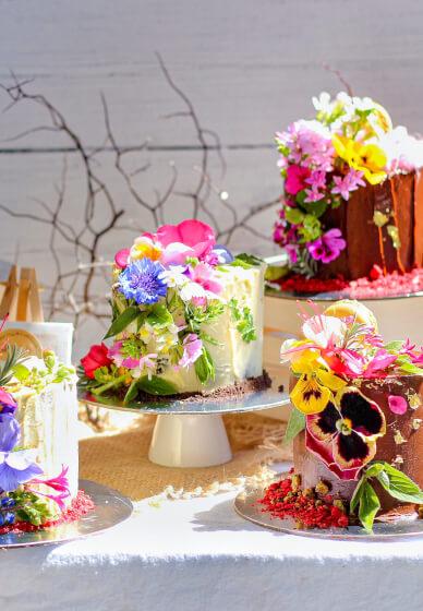 Cake Decorating Workshop and High Tea