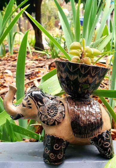 Clay Sculpture Class: Build an Elephant Planter