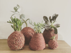 DIY Kokedama Workshop