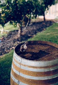 Experience the Taste of the Adelaide Hills