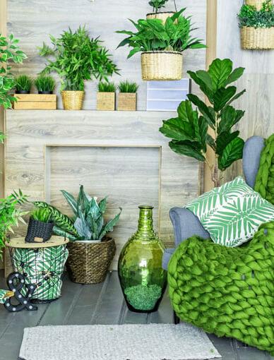 Indoor Plants Gardening Class