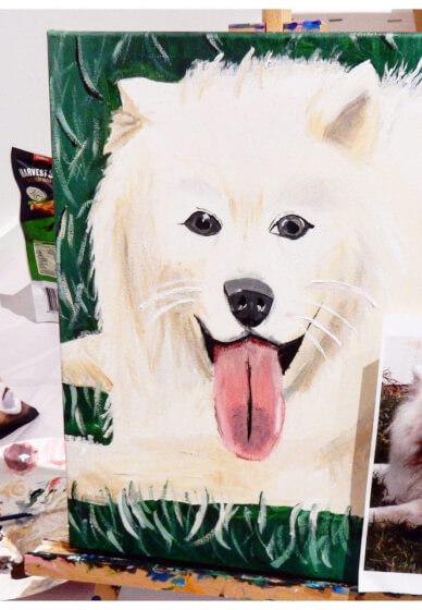 Paint Your Pet Class