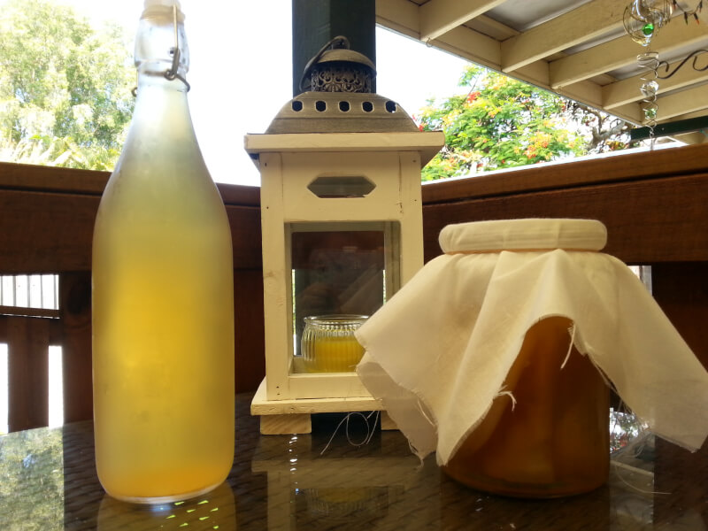Quick and Healthy Kombucha Workshop