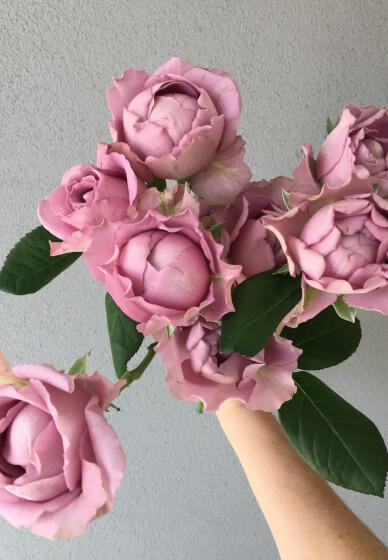 Romance of the Rose Flower Arranging Workshop