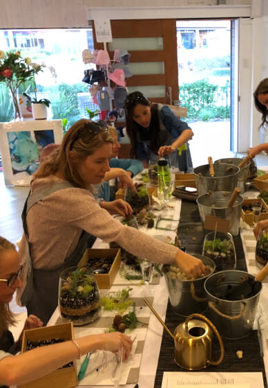 Succulent Terrariums for Beginners Workshop