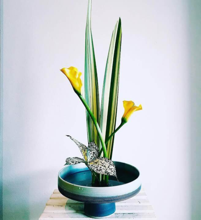 Ikebana Flower Arranging Class Sydney Events Classbento